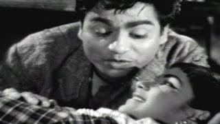 Sattekalapu Satteya Movie Songs || Muddu Muddu Navvu || Chalam || Shoban Babu || Rajasri