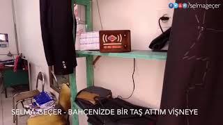 Selma Geçer - Bahçenizde bir taş attım vişneye