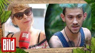 Sandra Steffl über Negroni's Zigarettenentzug - Dschungelnews