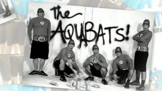 Awesome Forces! by The Aquabats from the album Charge!!