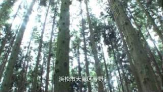「環 -TREE×ARTの軌跡-」 シンリンカンファレンス