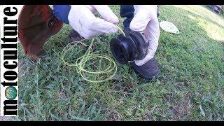 comment remettre du fil dans une débroussailleuse ou un coupe bordure