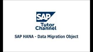 SAP HANA Data Migration Option