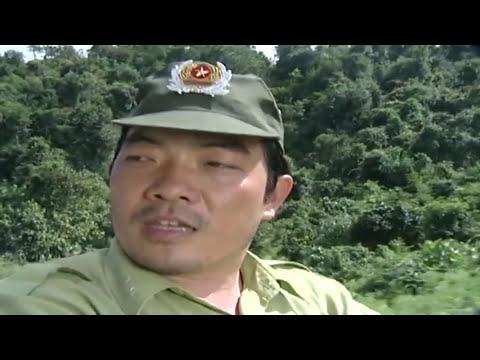 Cây Bản Mệnh Full HD | Phim Tình Cảm Việt Nam Hay Nhất