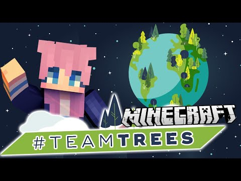 Make a Positive Change 🌱 #TeamTrees