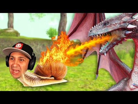 Can A Snail Defeat A Dragon.. |
