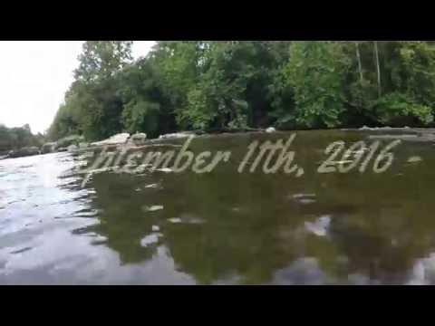Baptism on the Dan River - 2016