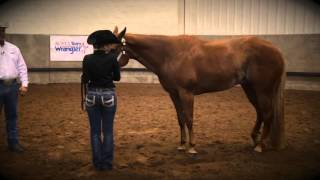 Repeat youtube video Showmanship Set-Up Tips