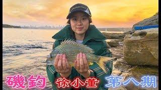 【磯釣】第八期 MrXu 徐小董 悉尼矶钓之   女一号回忆钓大鱼的心得体会 sydney fishing