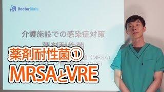 薬剤耐性菌①MRSAとVRE