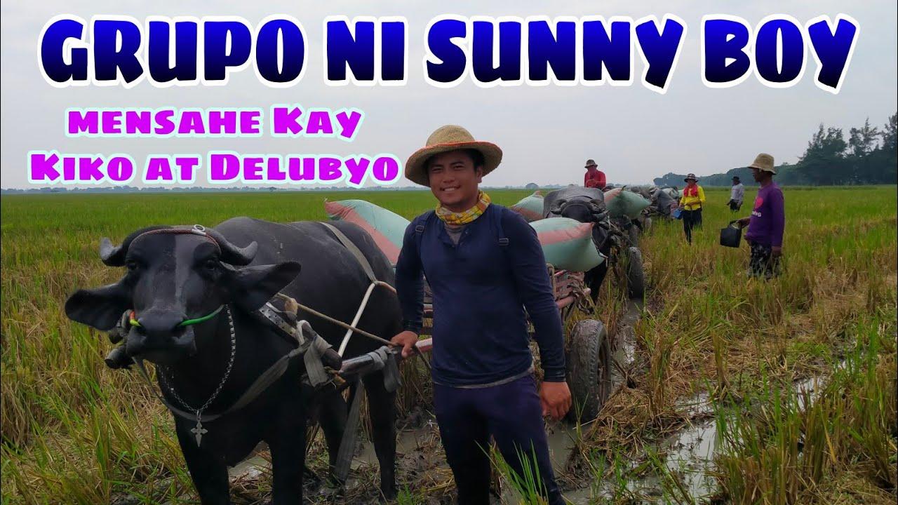 Download GRUPO NI SUNNY BOY MAY MENSAHE KAY KIKO AT DELUBYO BUHAY BUKID JRTV