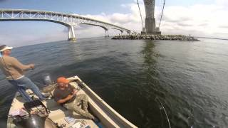 October 1, 2014 Fishing Kent Narrows For Rockfish And Bluefish