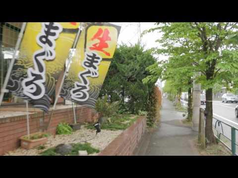 Videowalk to Edo-Tokyo open air museum in Koganei city, Tokyo