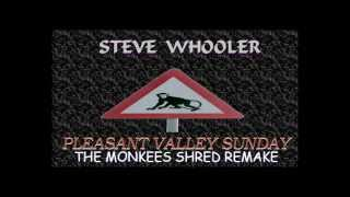"STEVE WHOOLER - ""Pleasant Valley Sunday"" (The Monkees Shred Remake)"