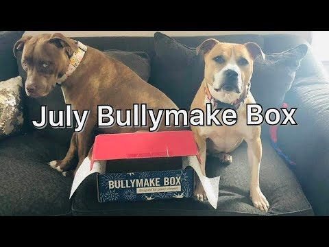 july-bullymake-box-2019