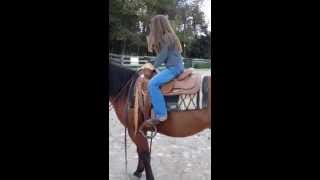 Saddle Sidekicks - Kids Saddle Solution - Fits over Full-sized Western Saddle in Seconds