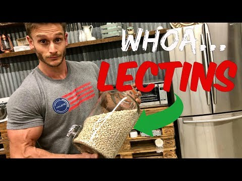 Gut Health | Are Lectins Bad | Lectins Equal Unhealthy Carbs? | Nutrient AbsorptionThomas DeLauer