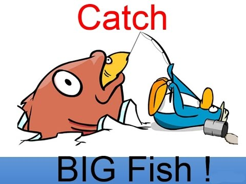 Catch The Big Fish In Club Penguin Maketboss I Club Penguin Pc