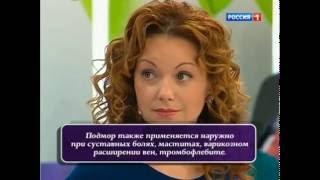 ПЧЕЛИНЫЙ ПОДМОР. телеканал Россия1. О САМОМ ГЛАВНОМ. apilad.ru