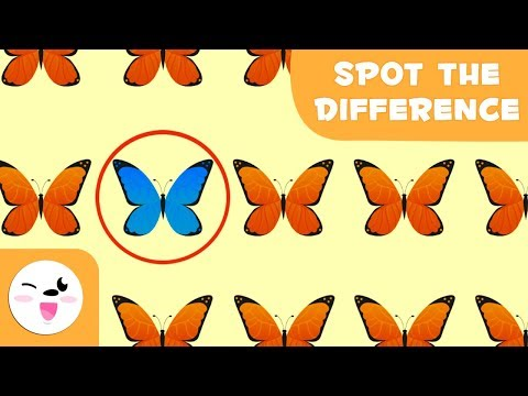 Guess the odd one out - Visual attention skills for kids - International Enviroment Day