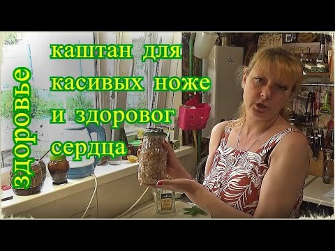 конский каштан, средство от варикоза, тромбоза, от многих болезней, здоровье, Шаповаловы