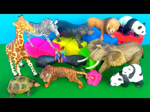 Happy Cute Zoo Animals WILD ANIMALS Lion Zebra Elephant toys - Learn about animals in English