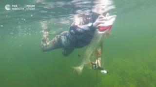 Подводная рыбалка Владимира Путина в Южной Сибири