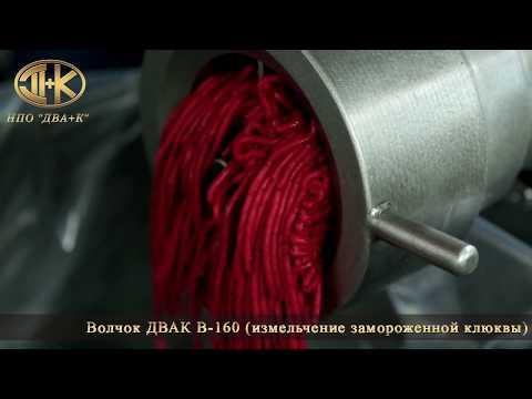Измельчение замороженных ягод клюквы на волчке ДВАК В-160-01