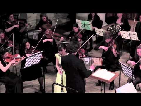 mozart clarinet concerto 1st movement pdf