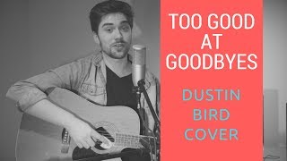 Too Good At Goodbyes - Sam Smith (Dustin Bird Cover)