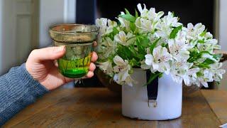 1 стакан такой воды под все цветы в доме и вас очарует пышным цветением и красотой