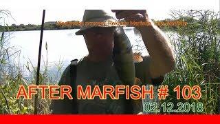After Marfish # 103 Wędkarska przerwa, Rekordy Marfisha, Liga Marfisha Live chat. - Na żywo