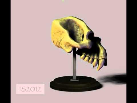 Ian's ZBrush creature skull sculpt 360