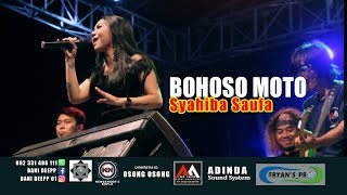 Gambar cover SYAHIBA SAUFA - BOHOSO MOTO(Live) AA JAYA MUSIC