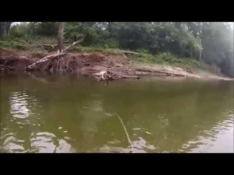 Fly Fishing Sugar Creek II 2015