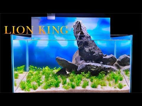 The Lion King Fish Tank (How To Aquascape: No Filter, No Ferts, No co2, No Heater Aquarium)