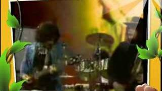 Leslie West  - Mountain Tribute - If I Were a Carpenter
