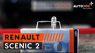 Как да сменим крушка на светлини за паркиране на RENAULT SCENIC 2 [ИНСТРУКЦИЯ]