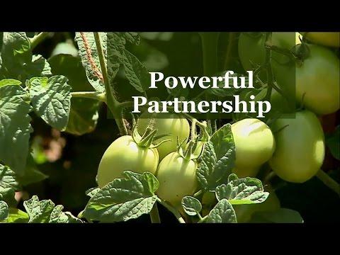 Powerful partnership