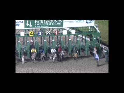 Ostrich, Zebra and Mascot Races at Fair Grounds in New Orleans