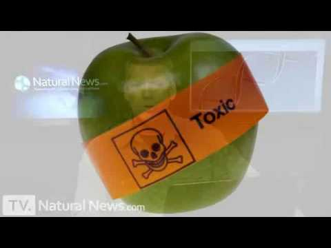 How GMO foods alter organ function and pose a very real health threat to humans