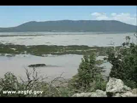 Parque nacional Zion camping conexiones completas