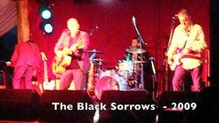 Black Sorrows - 2009 Longview Farm Party
