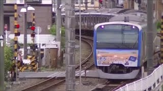 【午後の相鉄】 No.001 (2017.05.14)