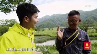 [远方的家]行走青山绿水间 热带雨林中的生存法则| CCTV中文国际
