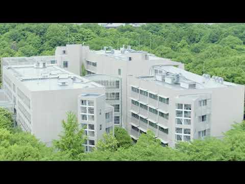 大学 昭和 薬科