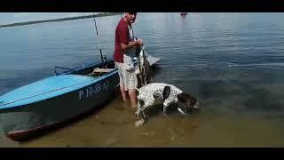 Рыбалка лето воспоминания муж поймал