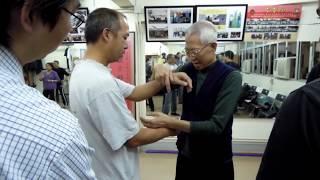 Chu Shong Tin Wing Chun -  Garn Sau demo - difficult movement!