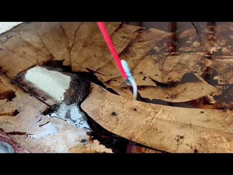 removing-black-mastic-from-concrete-with-blue-bear-mastic-remover