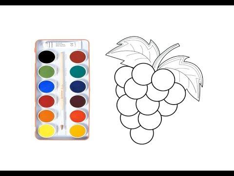 üzüm Nasil çizilir çocuklar Için Eğlenceli Boyama Sihirli